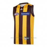 Camiseta Hawthorn Hawks AFL 2020 Local